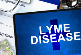 Lyme Disease and Indoor Air Quality in Toronto | Safe Air